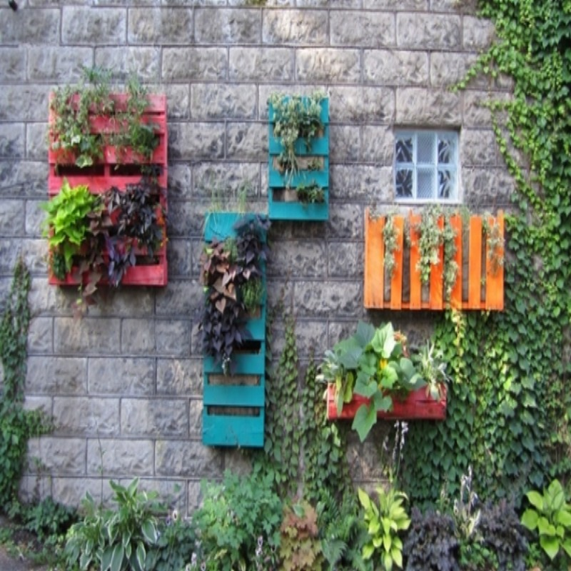 Pallets Patio Vertical Garden Wall