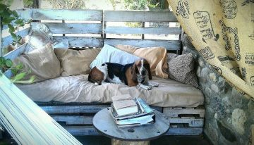 Rustic Pallet Dogs Daybed