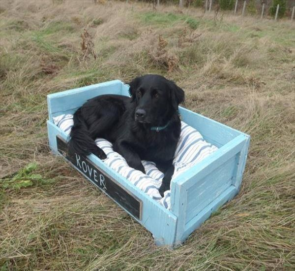 Pallets creations for your pets pallet ideas recycled for Wood pallet dog bed