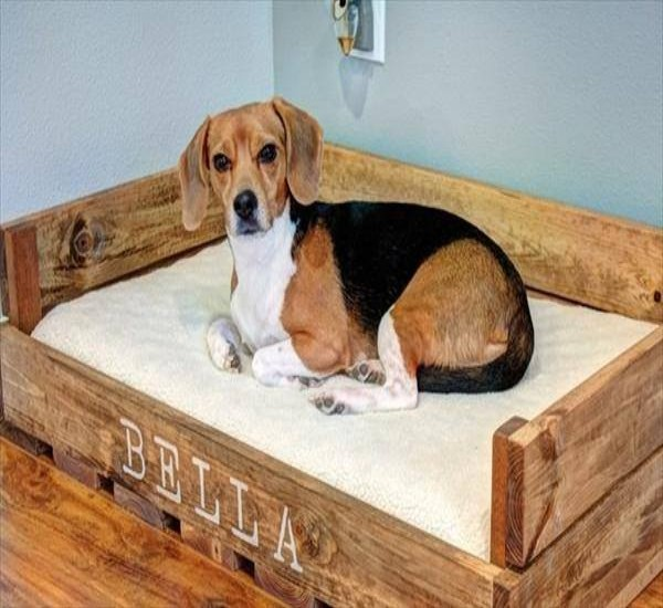 Pallets Creations For Your Pets Pallet Ideas