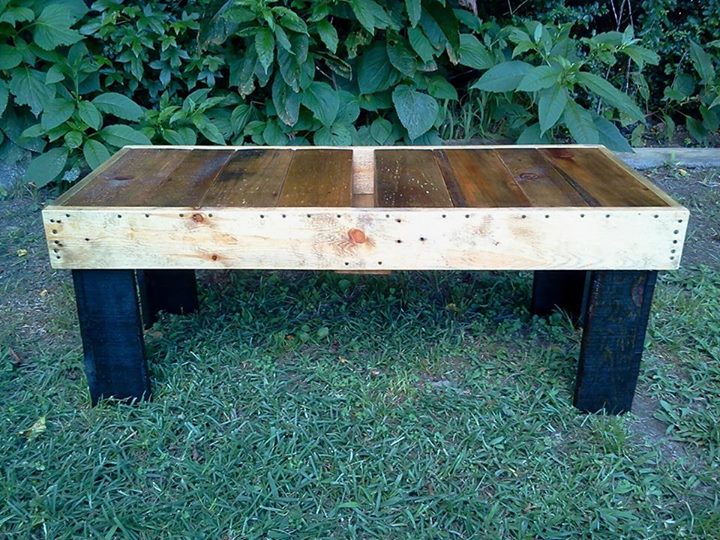 DIY Pallets Coffee Table