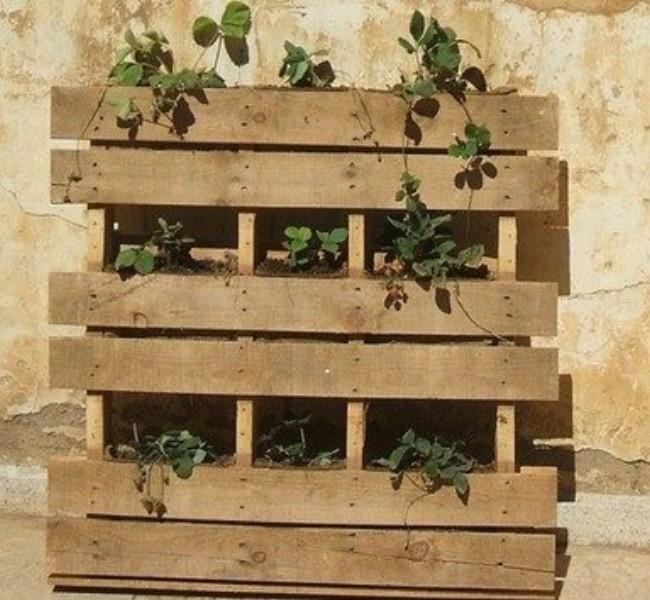 Garden Decor Using Pallets: Add Some Pallets To Decor Your Garden