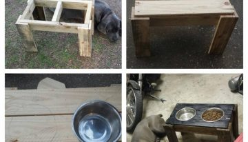 Dog Feeder Made with Pallets Wood