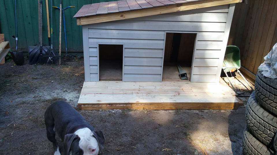 Dog House Made With Pallets Wood Pallet Ideas Recycled
