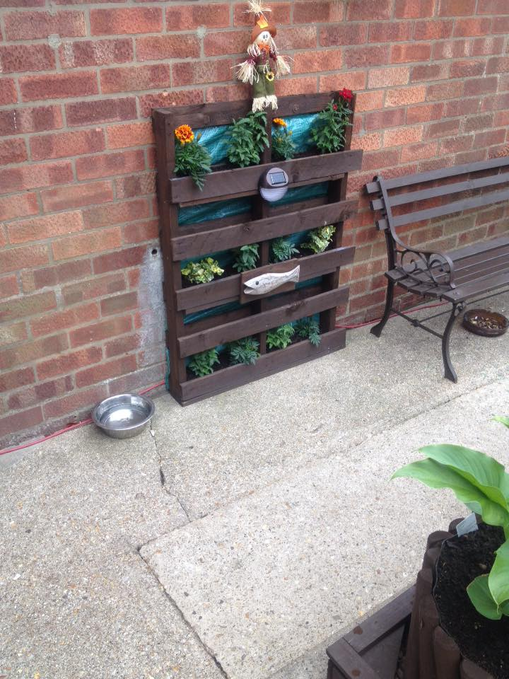 Pallets Wood Beautified Garden Pallet Ideas