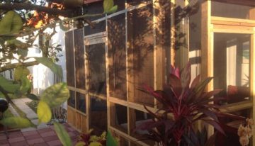 Patio Privacy with Wood Pallets