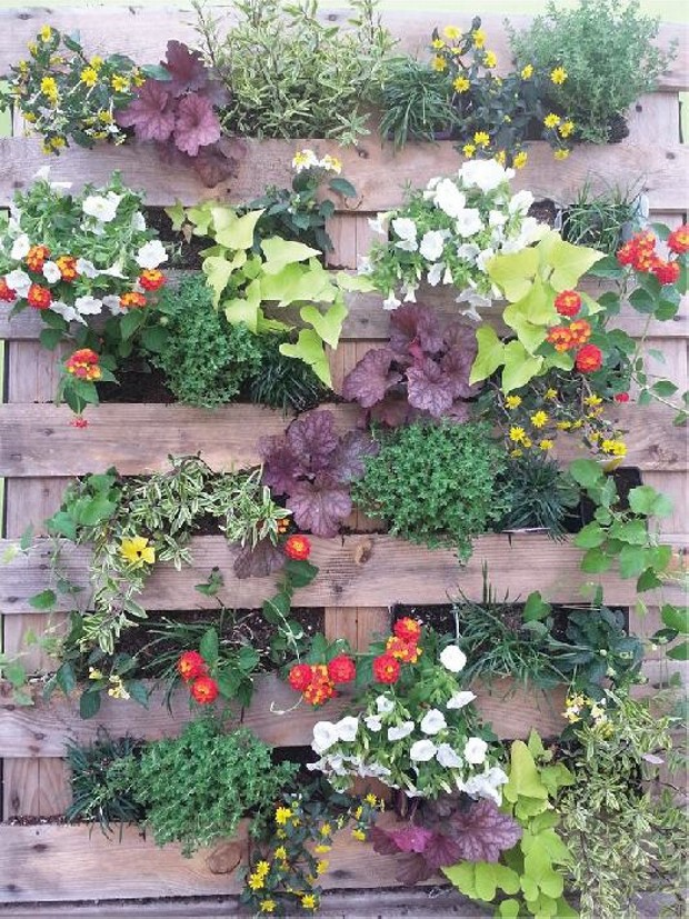 Stunning pallet wall planter projects pallet ideas for How to make plant pots from pallets