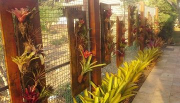 Garden Fence Decor with Pallet Planters