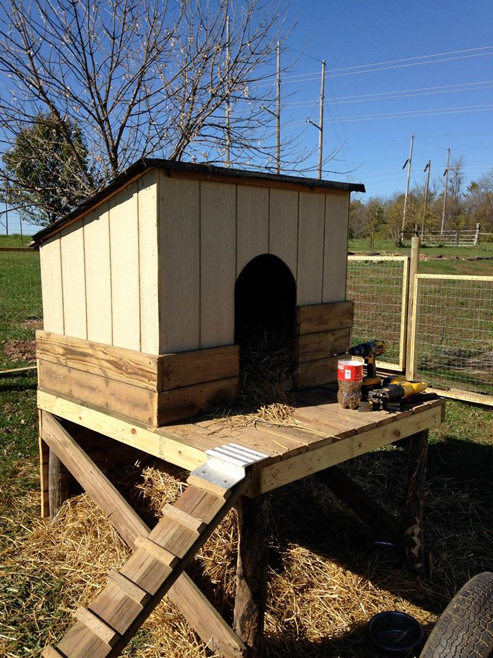 Pallet Wooden Made Goat House / Shelter | Pallet Ideas: Recycled / Upcycled Pallets Furniture ...