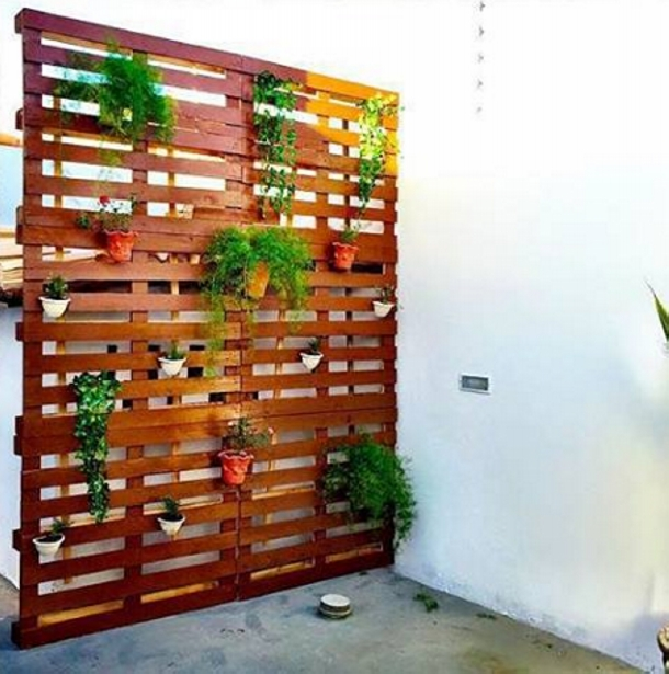 How to Make Upcycled Planters foto