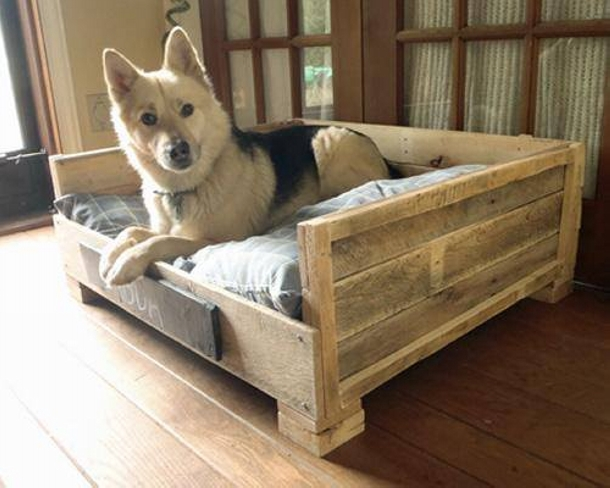 recycled pallet dog bed
