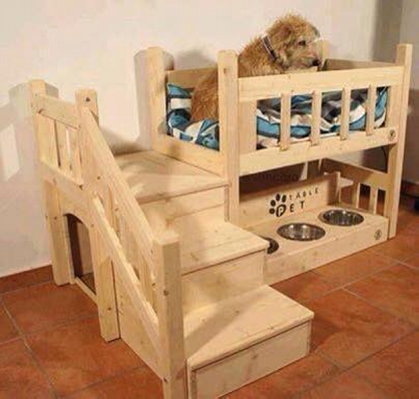 recycled pallet dog bunk bed