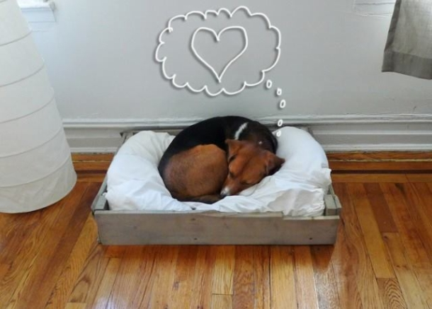 wood pallet dog beds