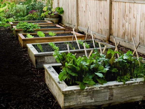 Pallet raised garden beds pallet ideas recycled for Pallet veggie garden