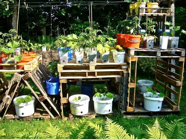 Pallet Garden Decor Plans