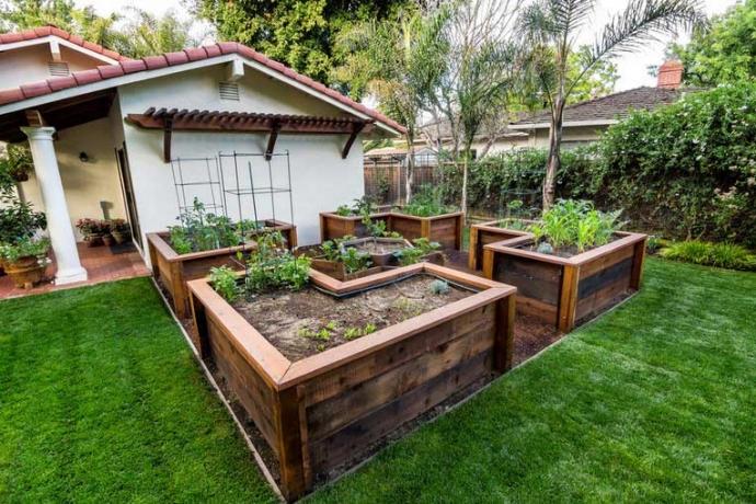 Pallet Raised Vegetable Garden