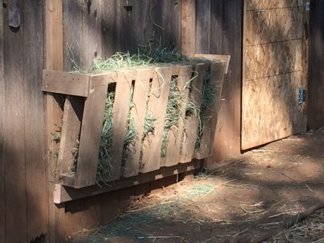 Pallets Hay Feeder Ideas | Pallet Ideas: Recycled ...