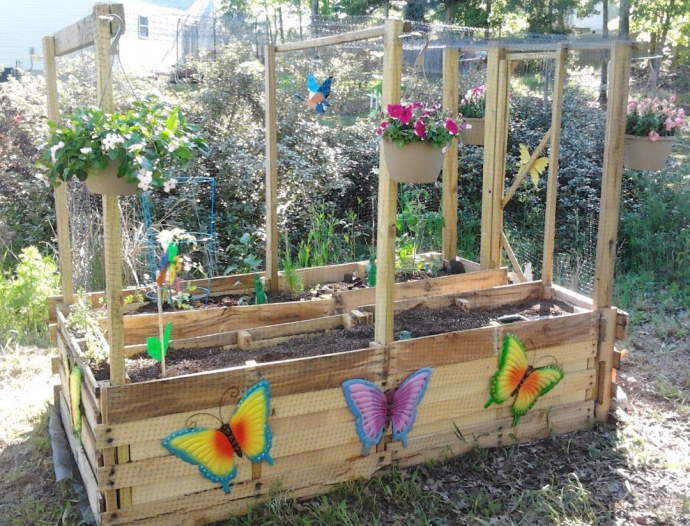 Pallet vegetable garden pallet ideas recycled for Garden project ideas