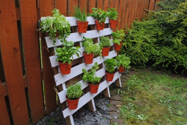 Garden Ideas Pallets: Ideas For Pallet Garden