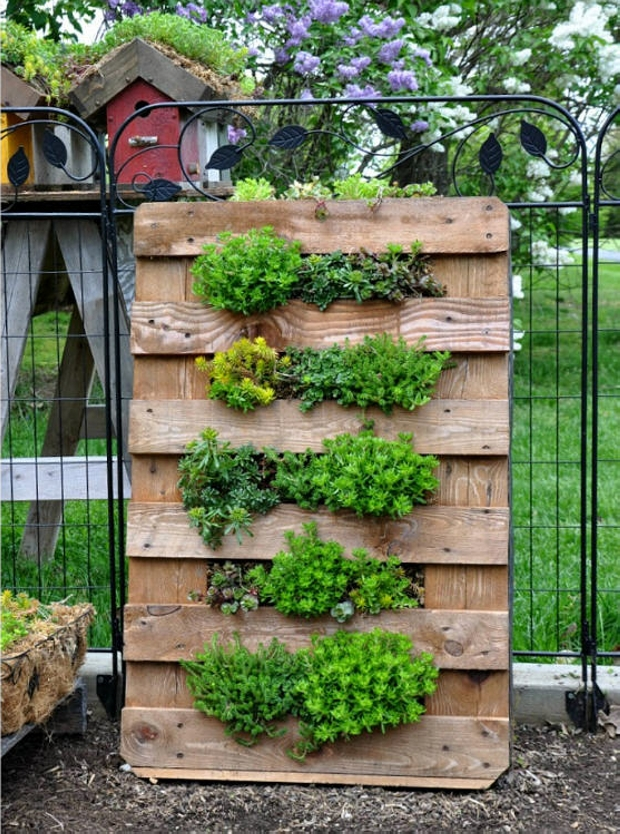Ideas for Pallet Garden | Pallet Ideas