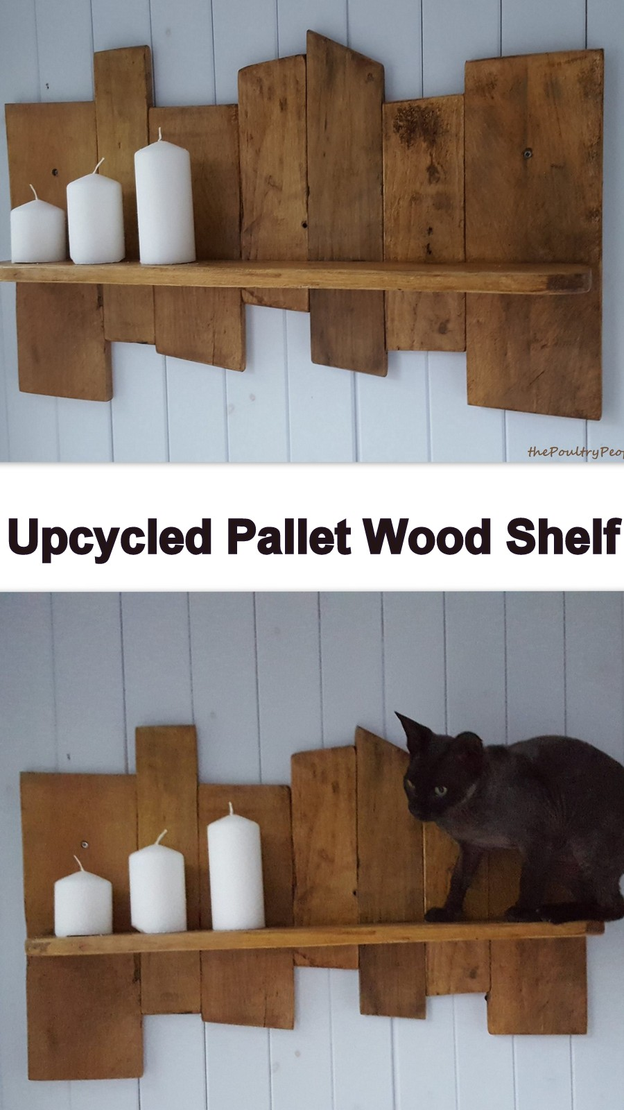 Wooden Pallet Shelf