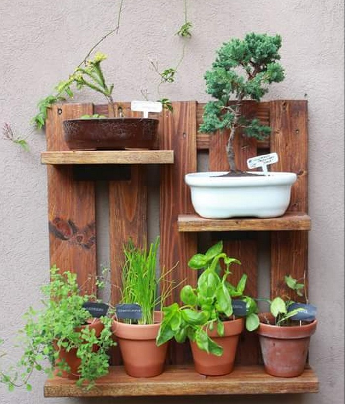 wood pallet pots shelf