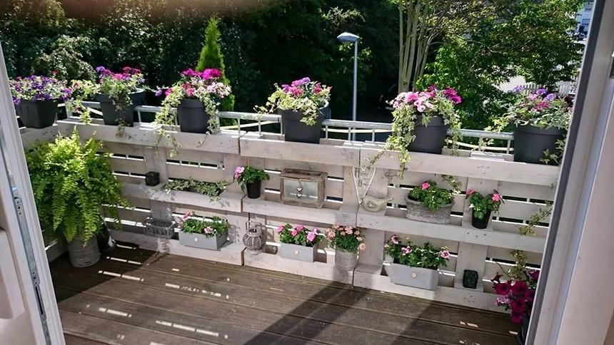 pallets garden idea