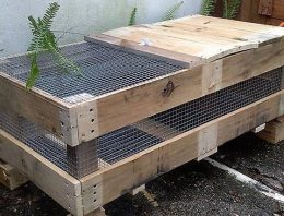 Wood Pallet Birds Cage