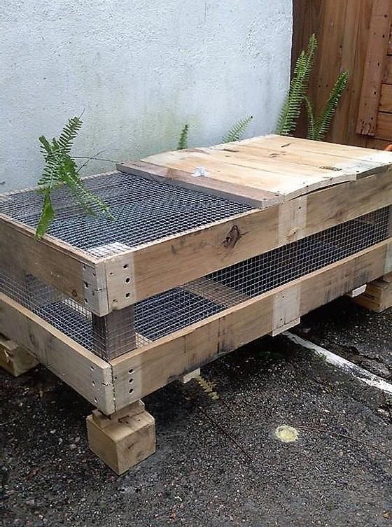 pallet-birds-cage