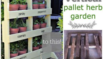 Pallets Vertical Herbs Garden DIY