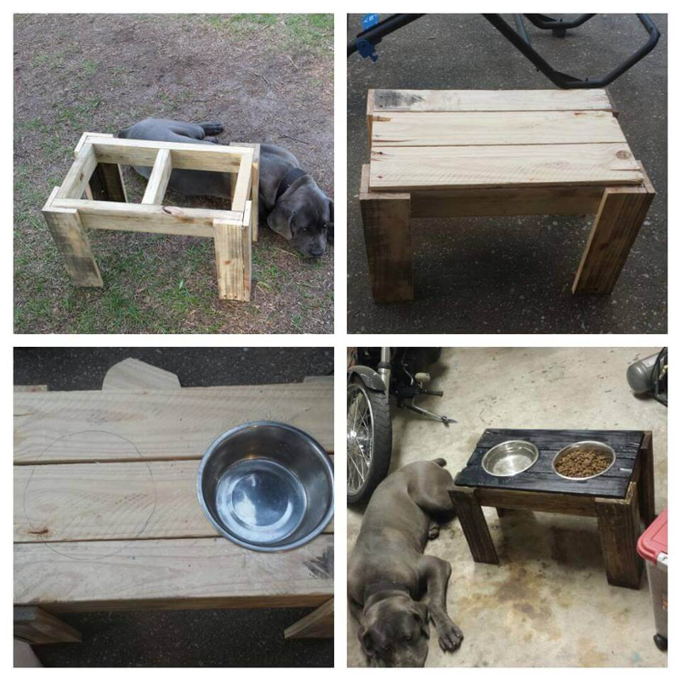 Dog Feeder Made With Pallets Wood Pallet Ideas