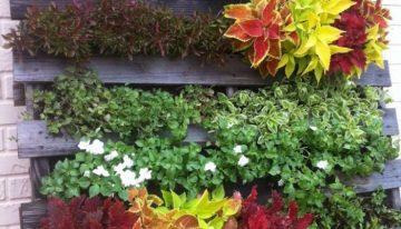 Pallet Garden Cute Inspirations