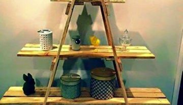 Pallet Shelves in Ladder Style