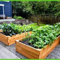 Pallet Raised Garden Beds
