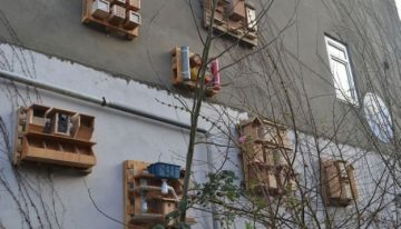 Pallet Made Bugs / Insects Houses